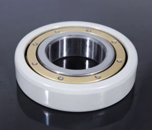 Insocoat Bearing / Insulated bearing